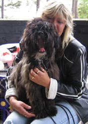 BEST IN SHOW - puppy at TT-speciality show under judge Filippa Gilbert